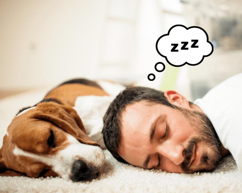 Czy wiesz o czym śnisz?